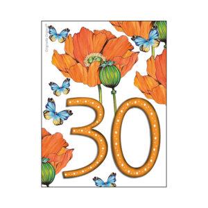 30 års minikort