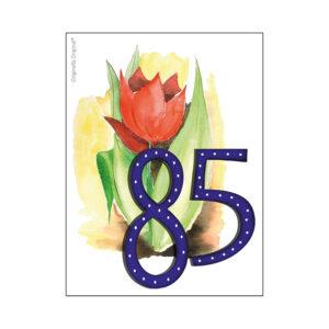 minikort 85 år